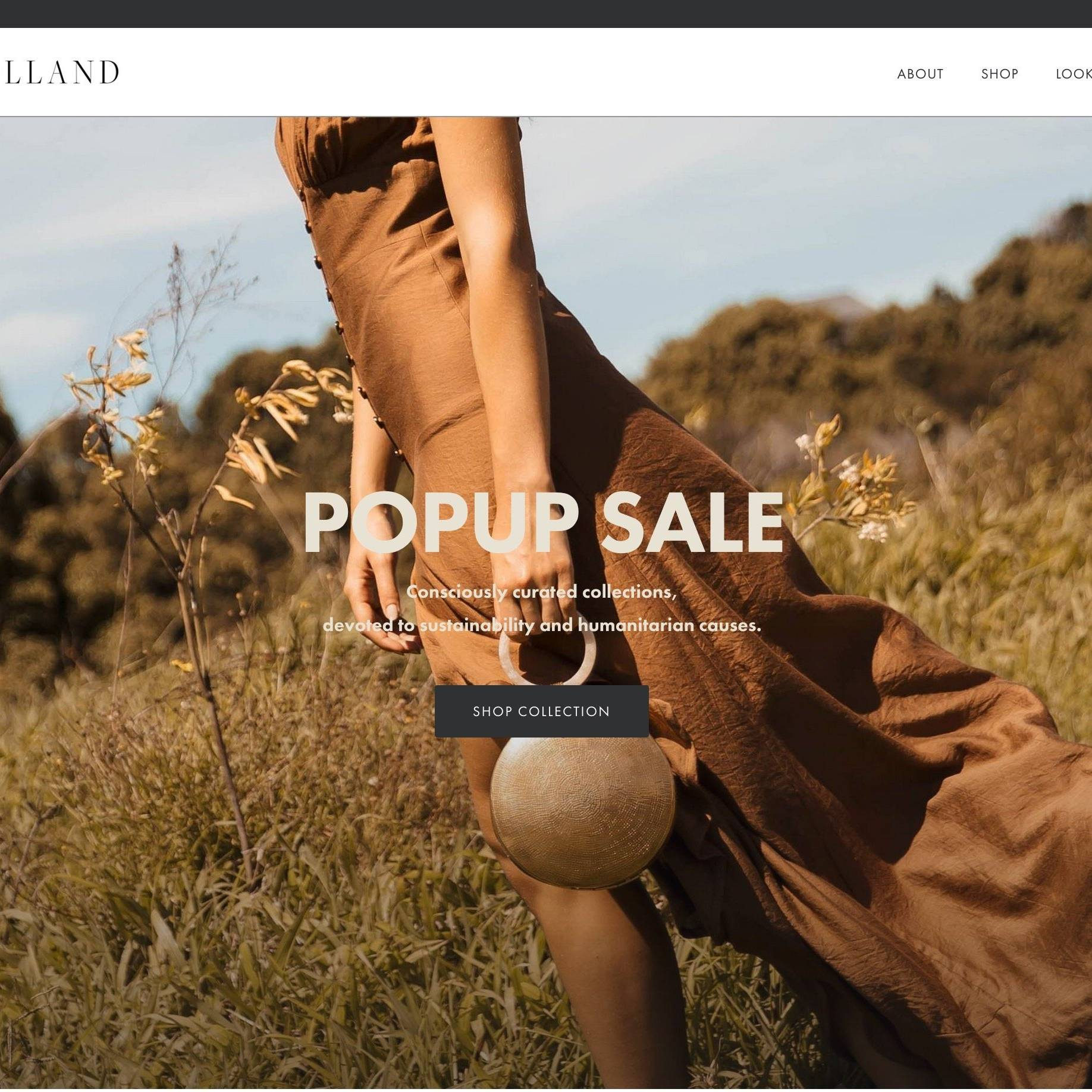 Nataschia Holland Site By The Creative Solutionist